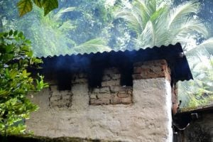Can Electric Smokers Be Used Inside Your Home?