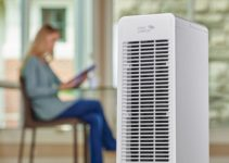 Best Air Purifiers Reviews for 2021