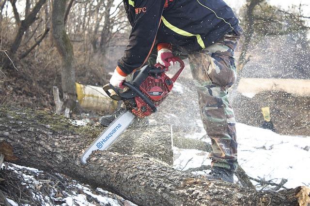man cutting wood using chainsaw