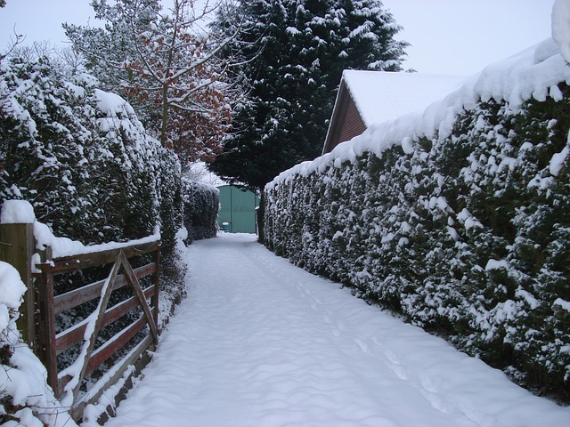 Can Snow Blowers Break Ice?