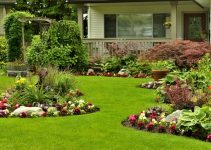 How Gardens Help the Environment