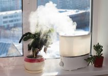 Are Air Purifiers and Humidifiers the Same Thing?