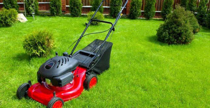 7 Best Electric Start Self Propelled Lawn Mowers