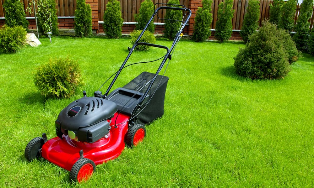 7 Best Electric Start Self Propelled Lawn Mowers