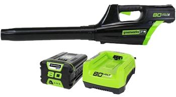 Greenworks PRO GBL80320