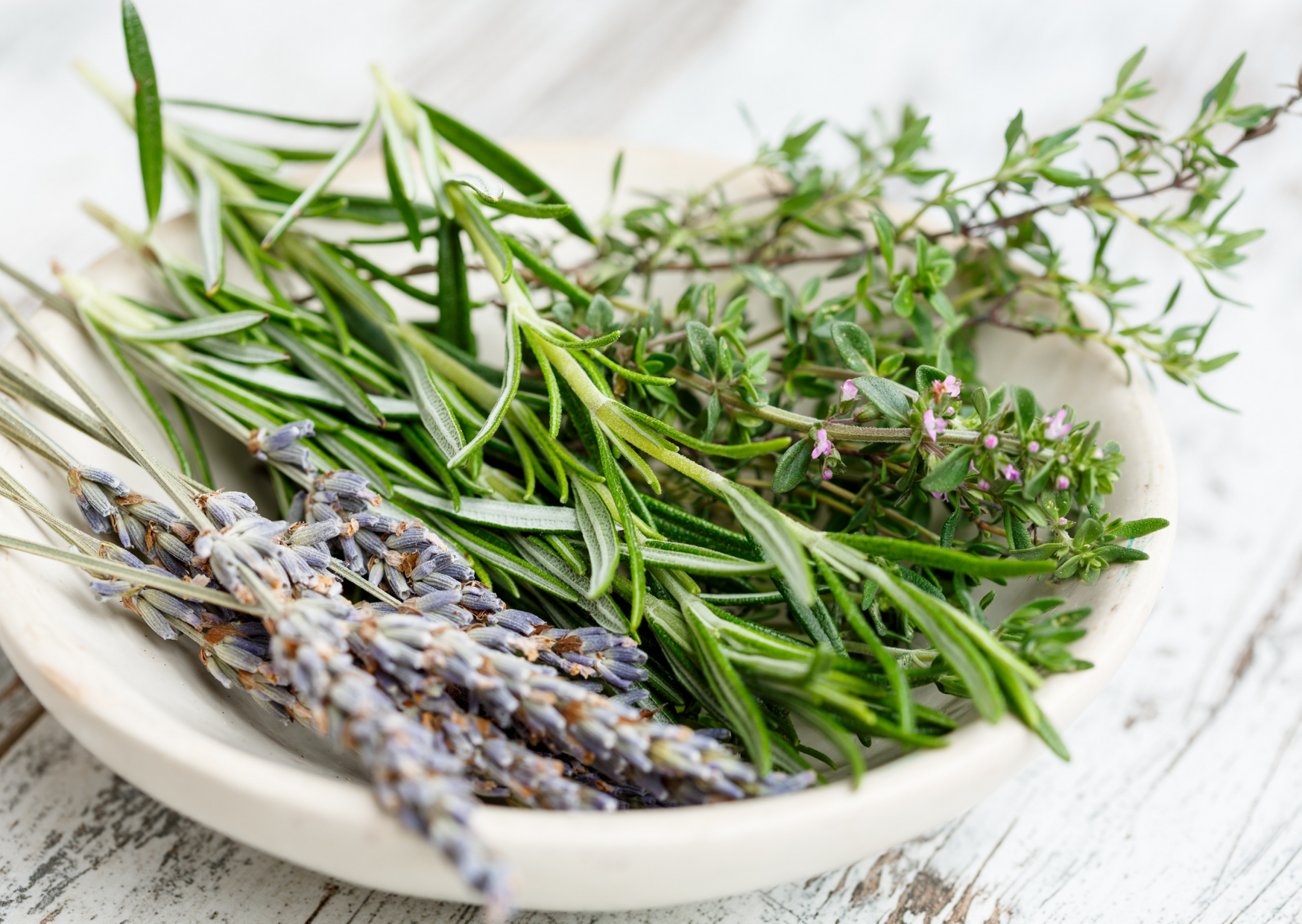 a photo of thyme