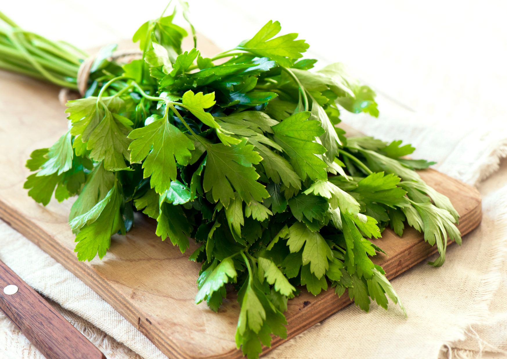 a photo of parsley