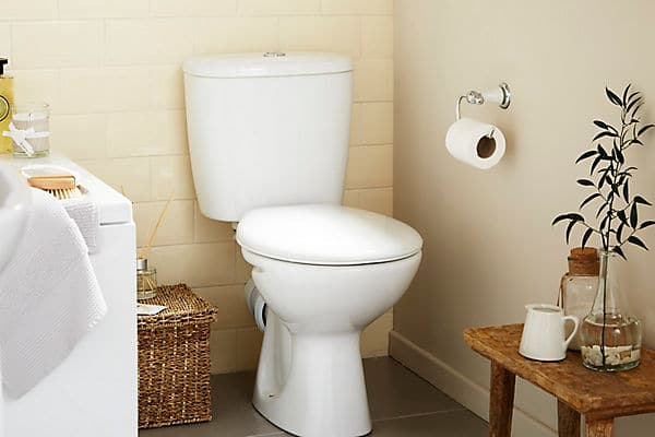 When Did Toilets Become Common?