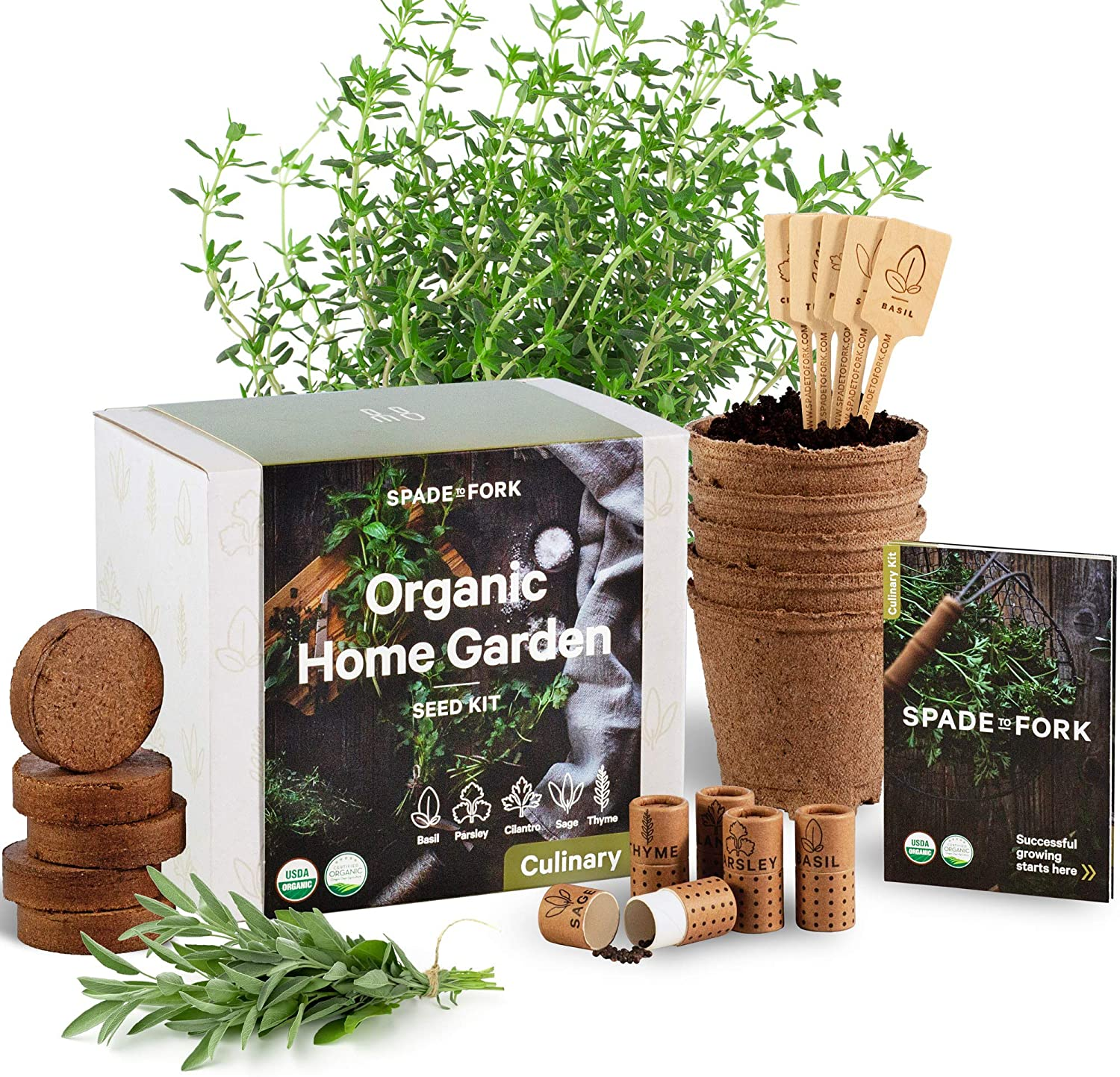 Indoor Herb Garden Starter Kit for Growing Herb Seeds Indoors