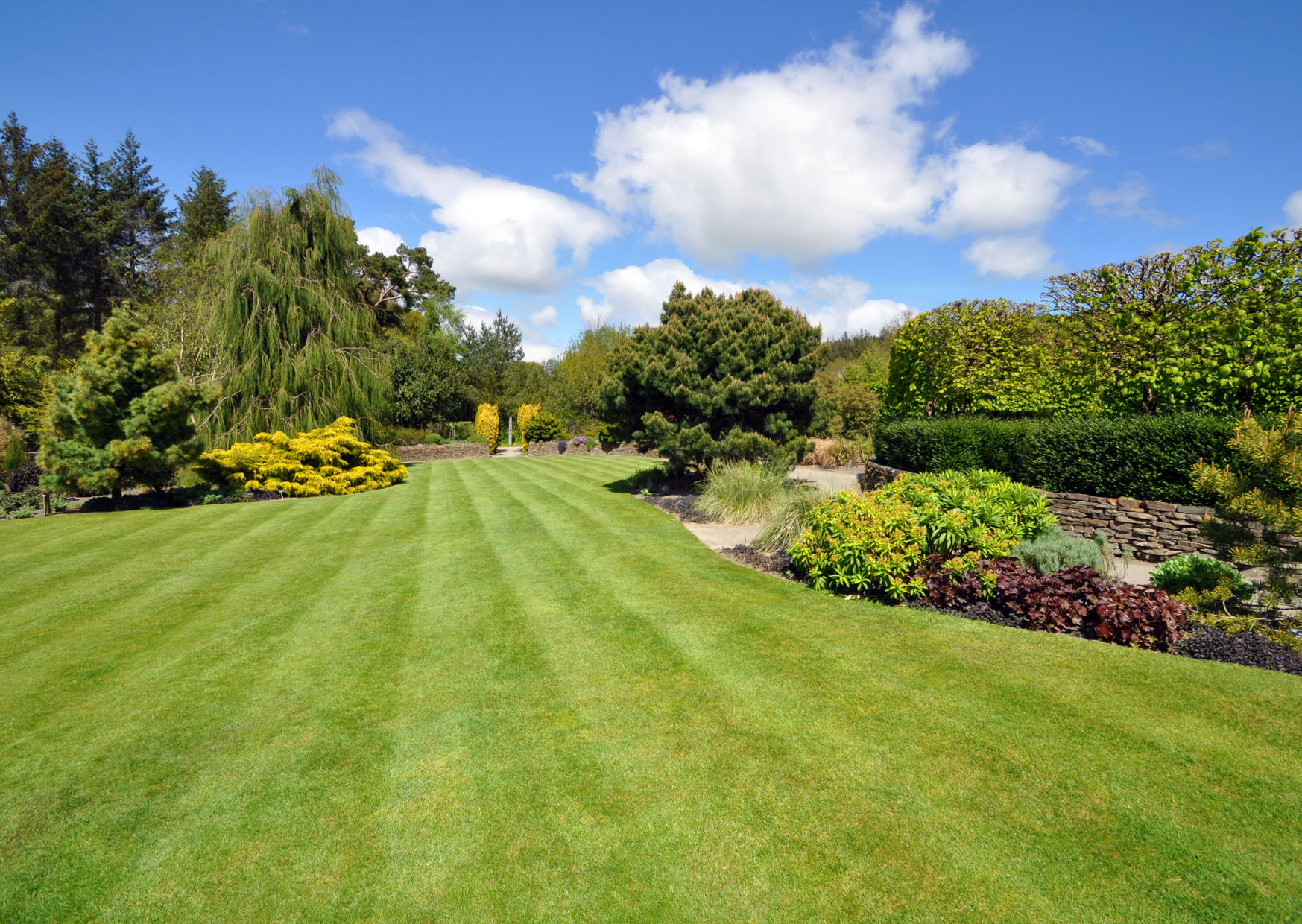 a photo of a garden in landscape