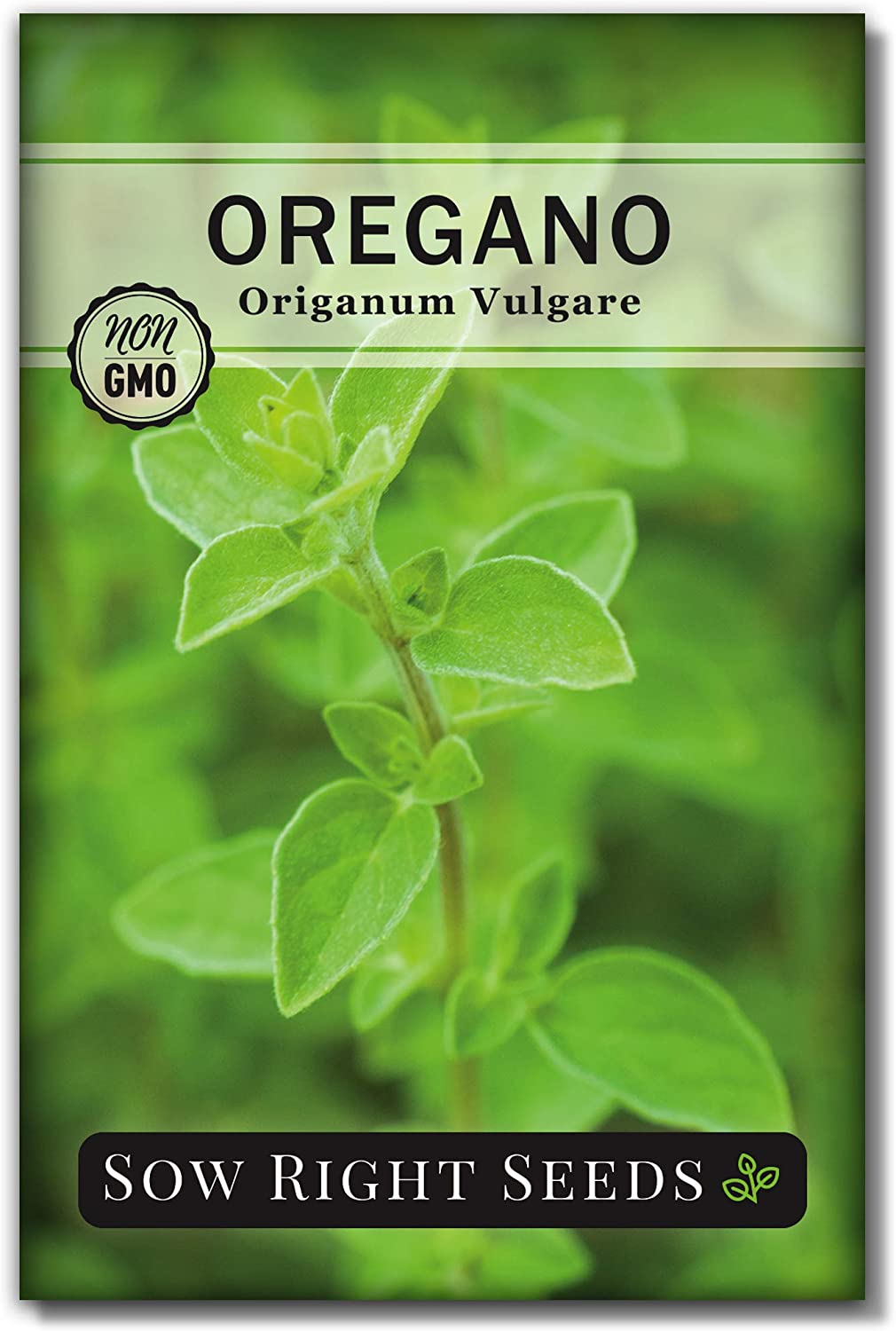 Sow Right Seeds - Oregano Seed for Planting