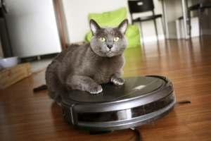 Will a Smart Vacuum Remove Pet Odors?