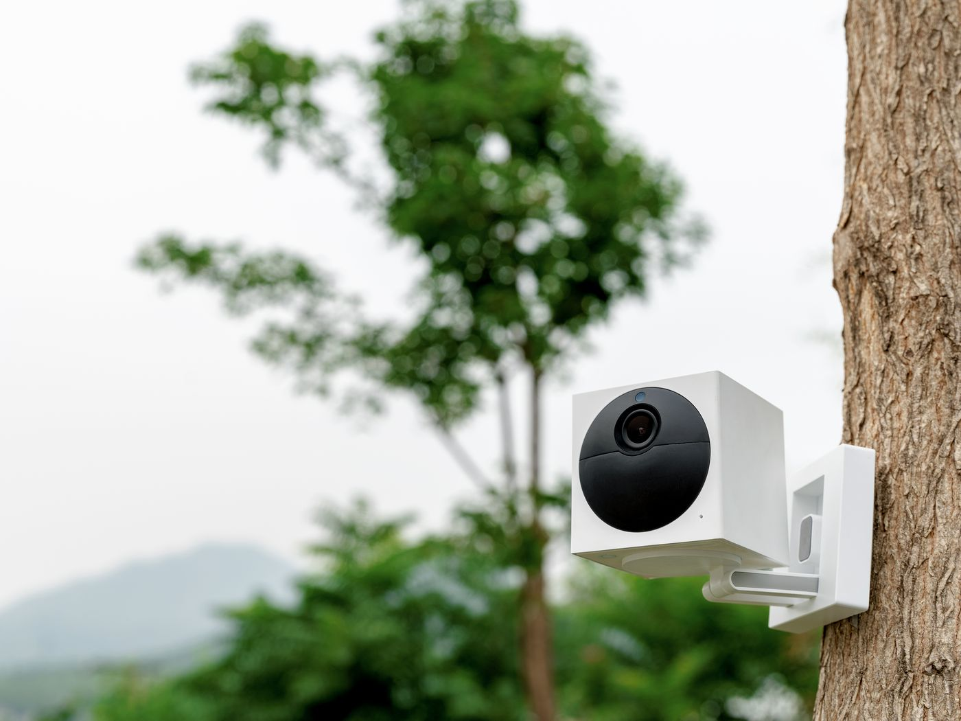 Photo of wyze cam outside