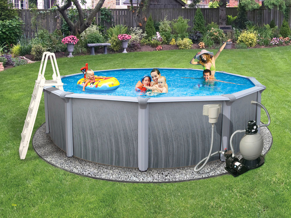 Photo of above ground pool with whole gamily