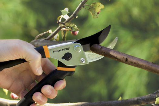 Photo of Fiskars pruning shears while cutting some branches