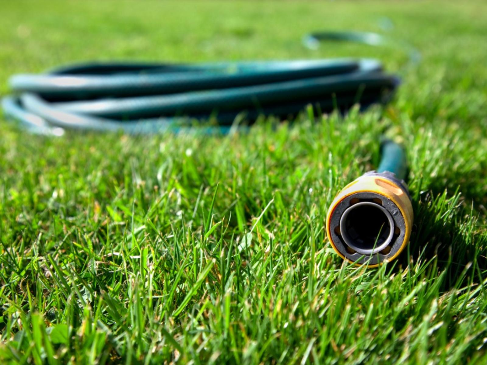 Photo of Garden hose