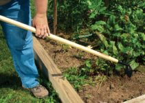 How To Hoe Your Garden (With Different Types of Tools)