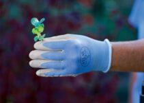 Best Thermal Gardening Gloves