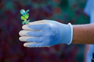 Photo of thermal gardening gloves