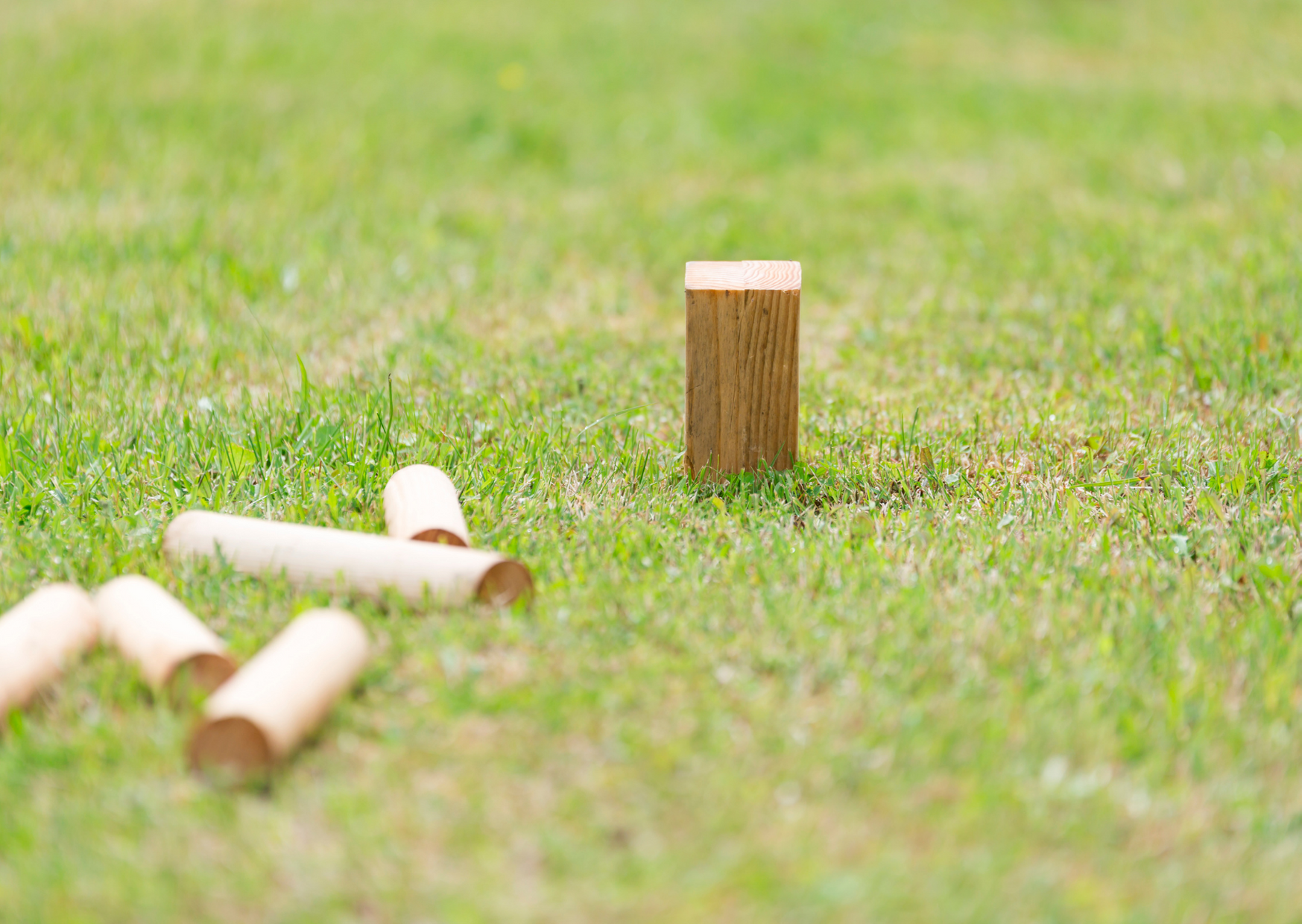wooden swedish lawn game