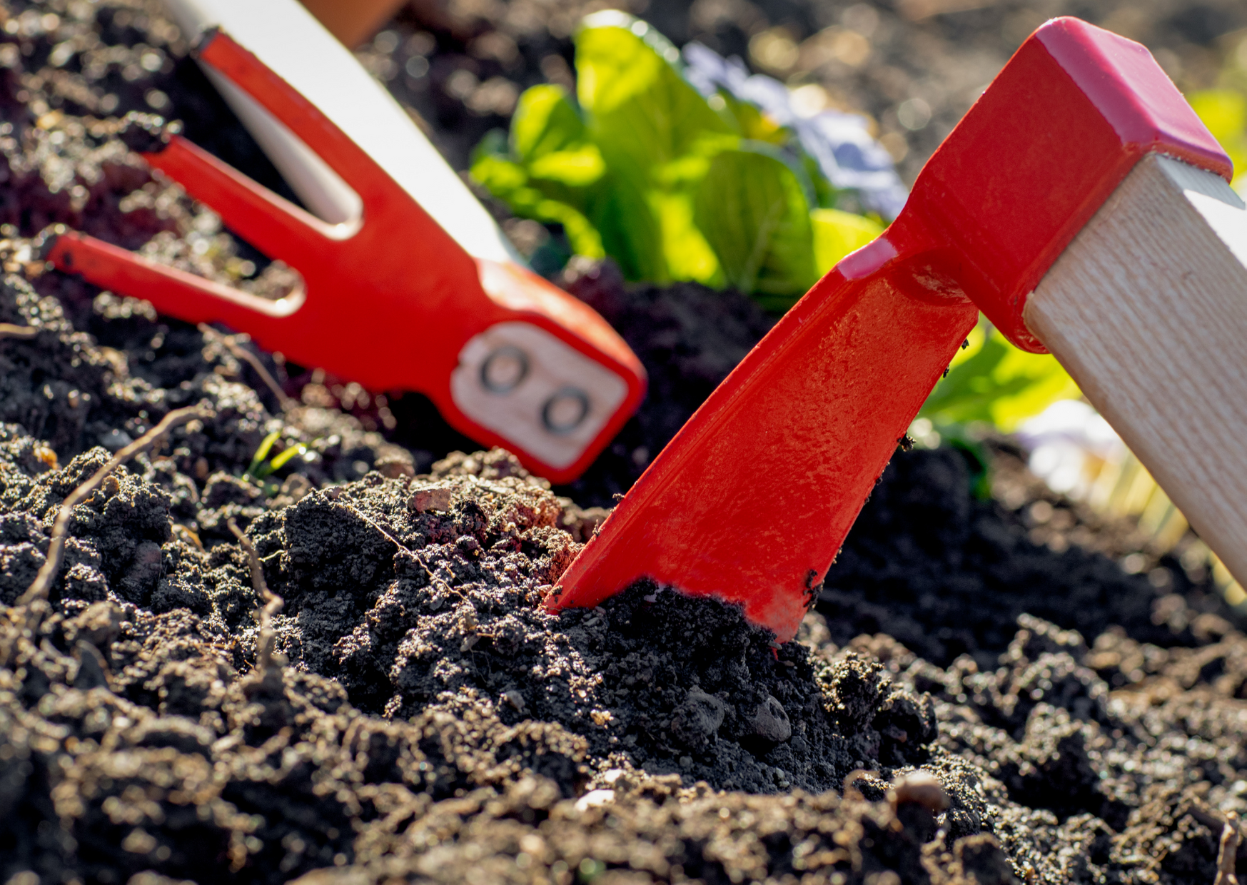 Tilling the Earth in a Small Garden