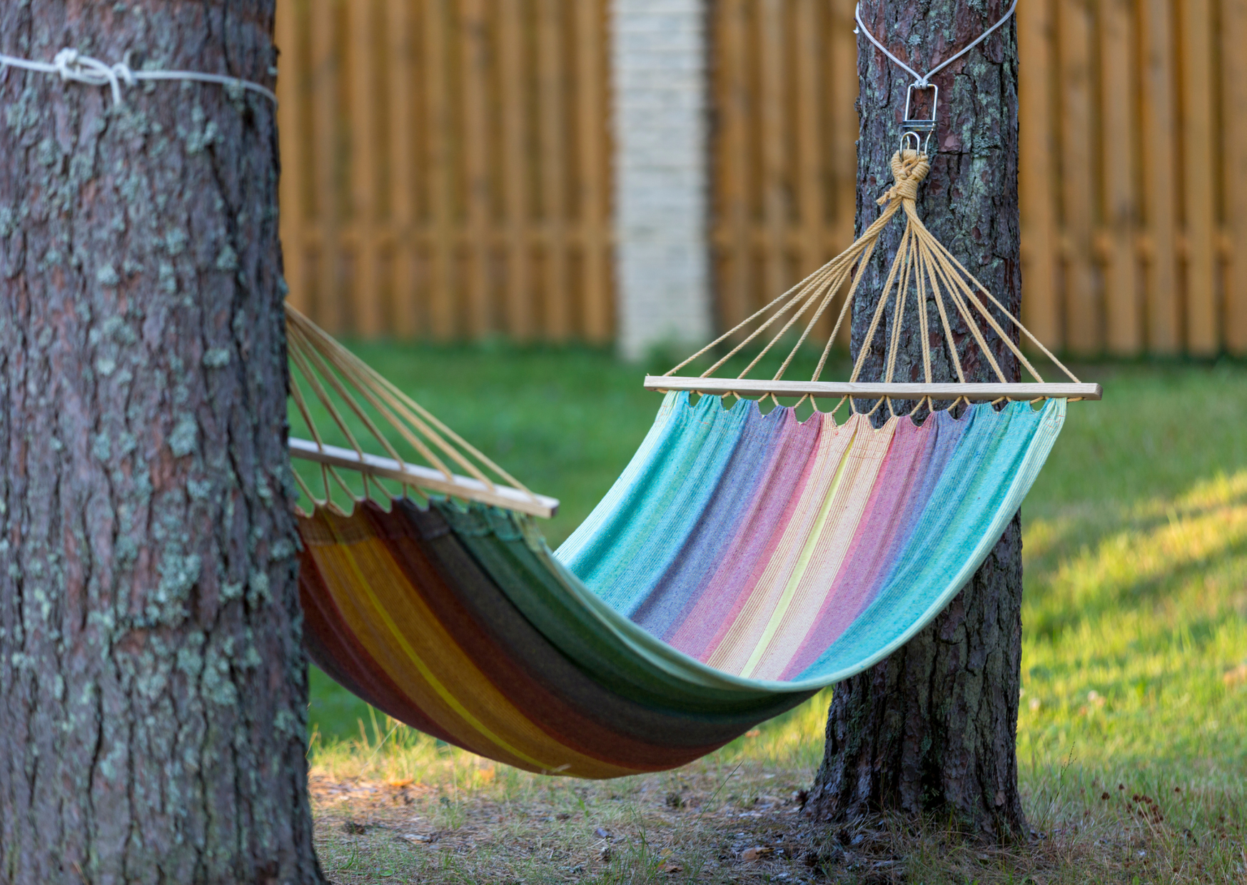 a colorful hammock tied in trees