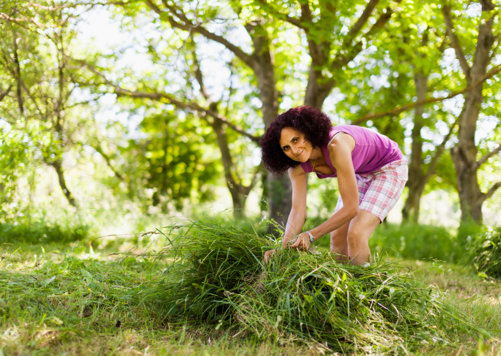 a woman picking the pile of cut grass