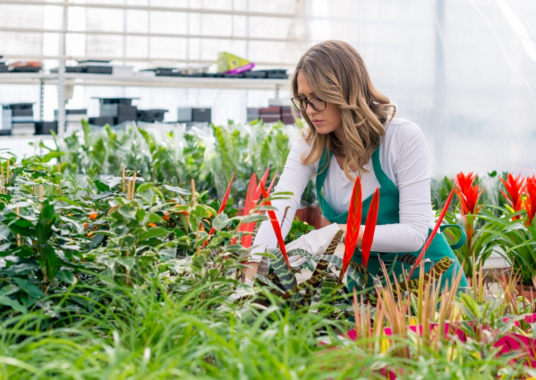 a woman checking on a plants