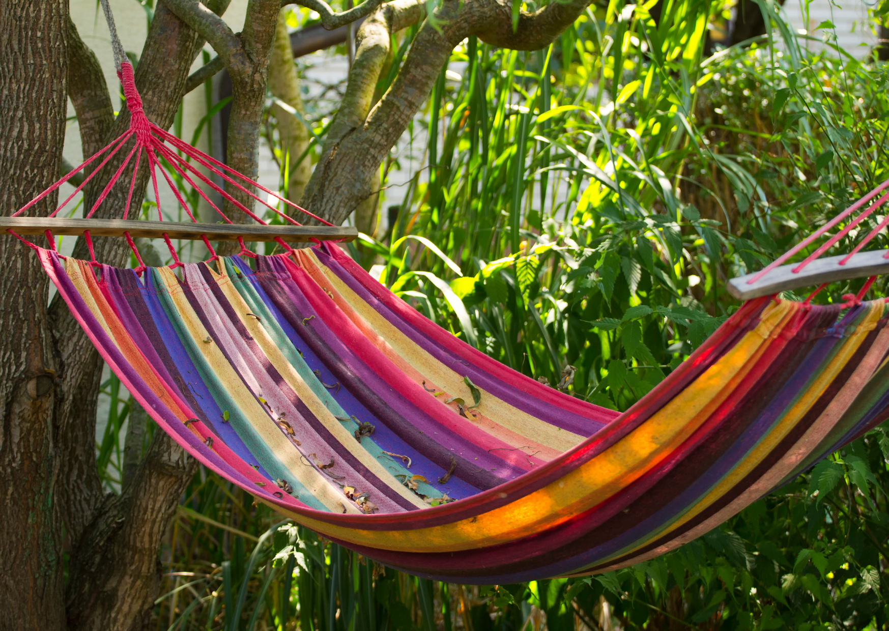 a colorful hammock outdoor