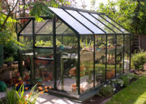 Best Backyard Greenhouses