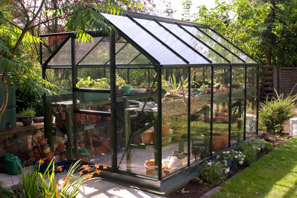 Photo of Greenhouse in backyard