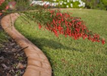How to Replace Garden Edging