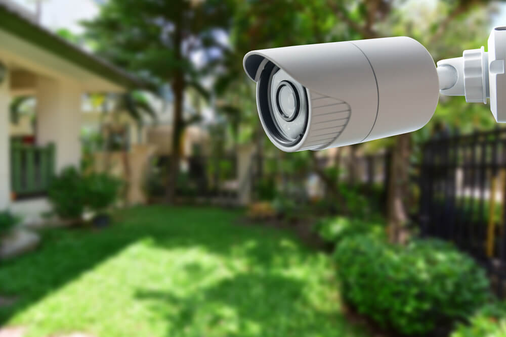 Camera in the backyard
