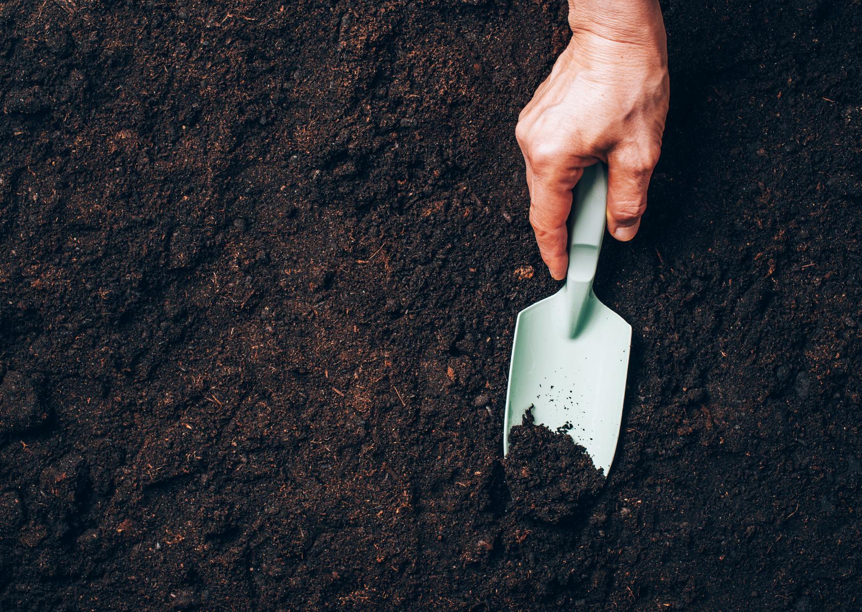 Improving Garden soil