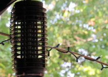Will a Bug Zapper Kill Flies?