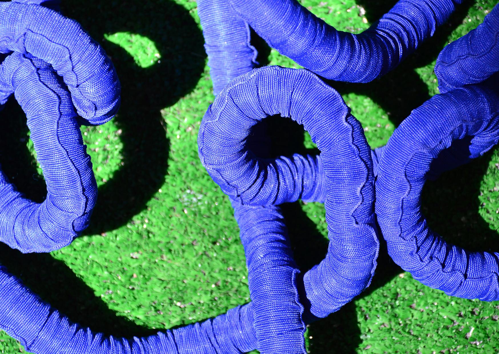 a blueexpandable hose