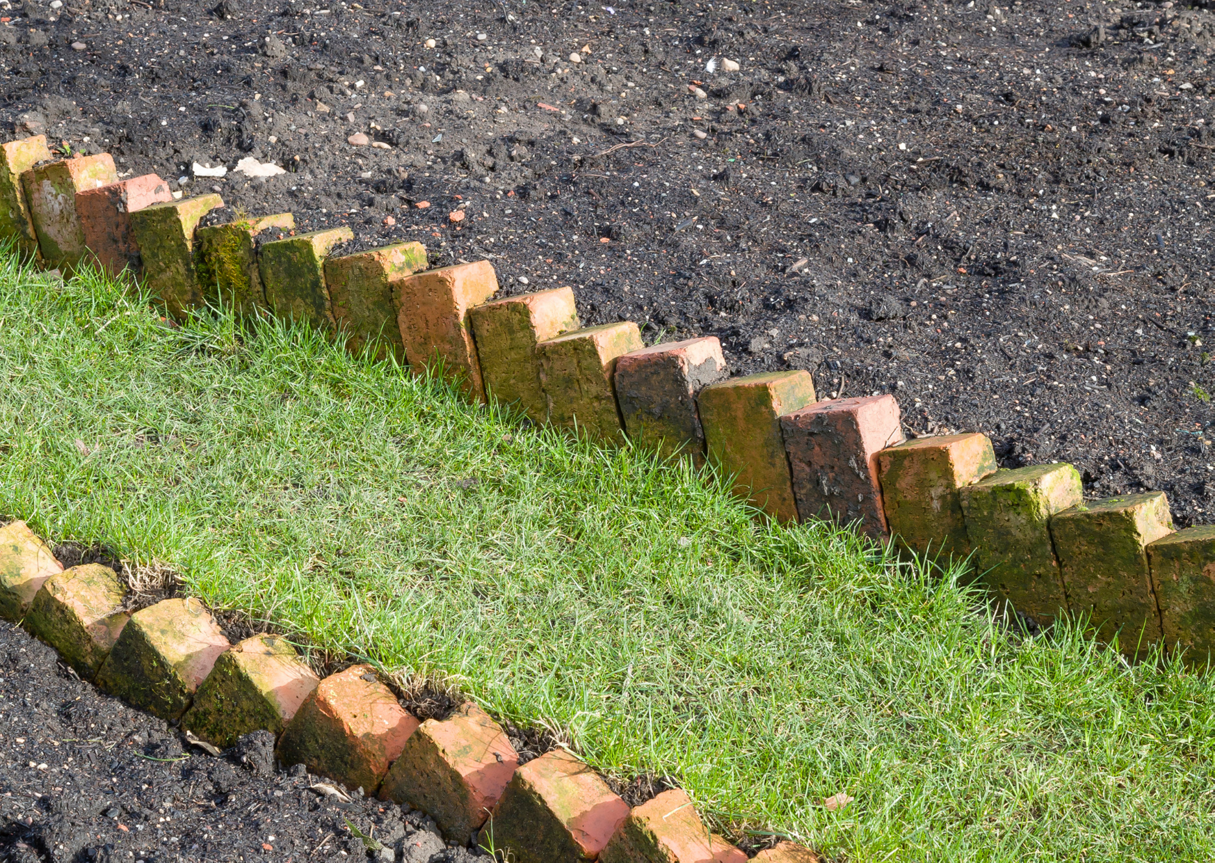 image of garden brick edging