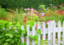 Best Garden Fence