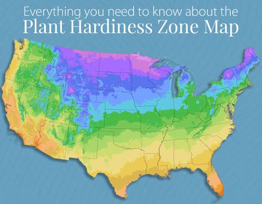 USDA Plant hardiness zone
