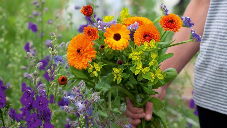 cut garden flowers