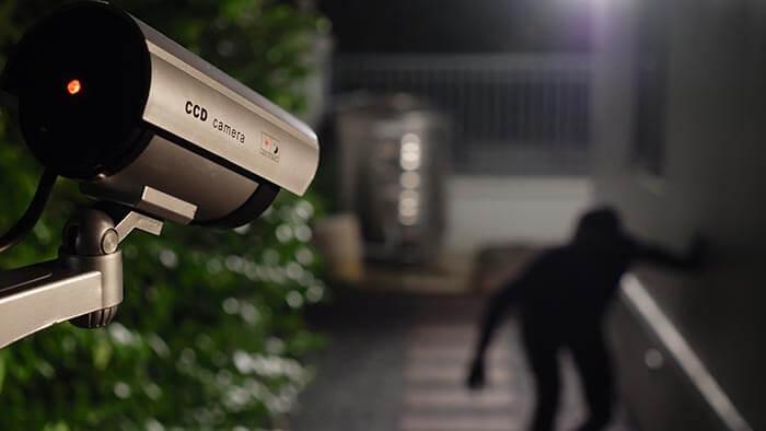 Security cam caught thief