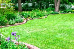Photo of Garden Have stone edging