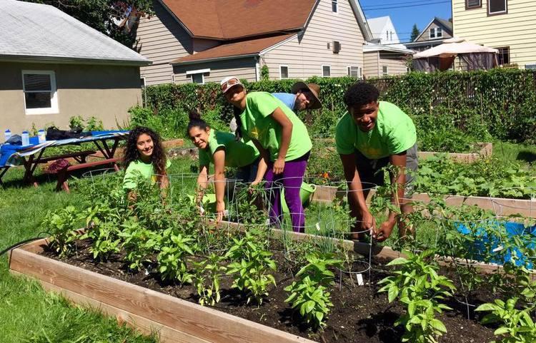Teens planting
