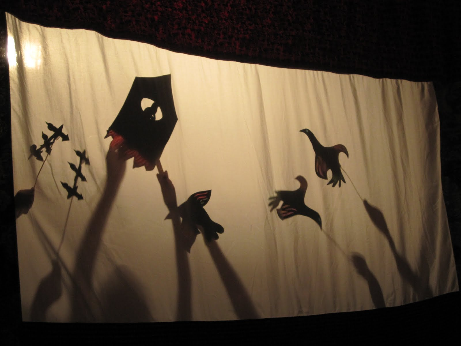 Playing Shadpw Puppets
