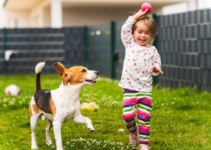 Backyard Activities for 3 Year Olds