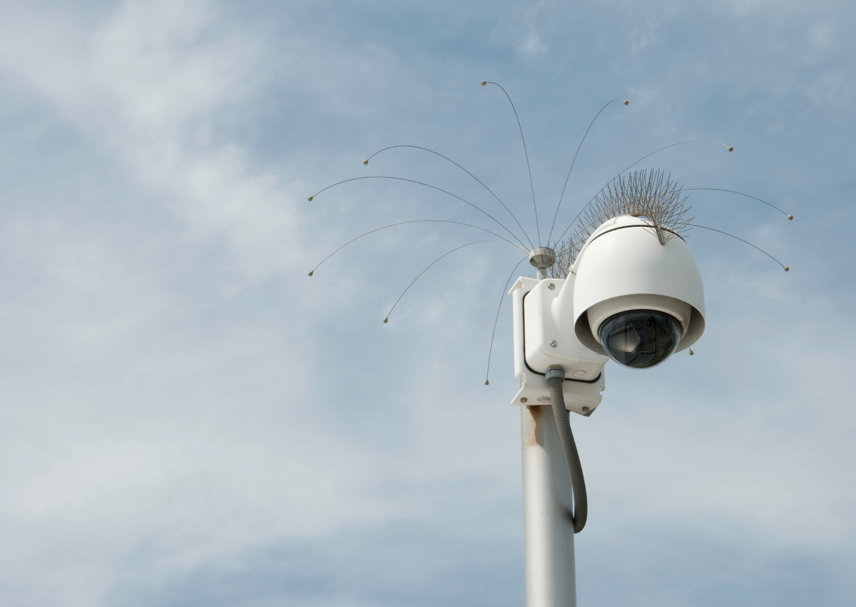 Photo of wired security camera