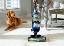 Best Upright Vacuum for Dog Hair