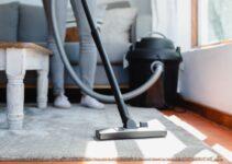 Best Vacuum Cleaner for New Carpet
